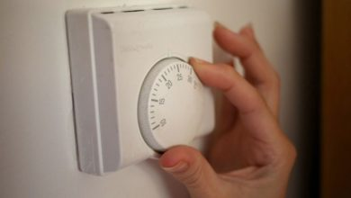 On today's show, we look at how renewables could keep energy costs down this winter.
