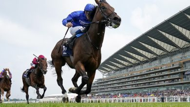 Adayar is set for fascinating battle with rival Mishriff in the Champion Stakes on Saturday